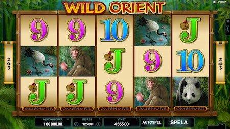 Wild Orient videoslot
