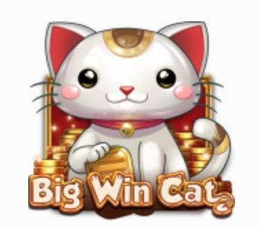 Big Win Cat Slot - Casumo Casino