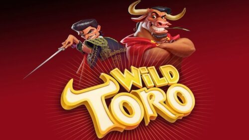 wild-toro-elk
