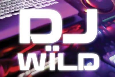 dj-wild-slot-elk-studios